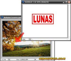 gambar: tutorial stempel 11.jpg